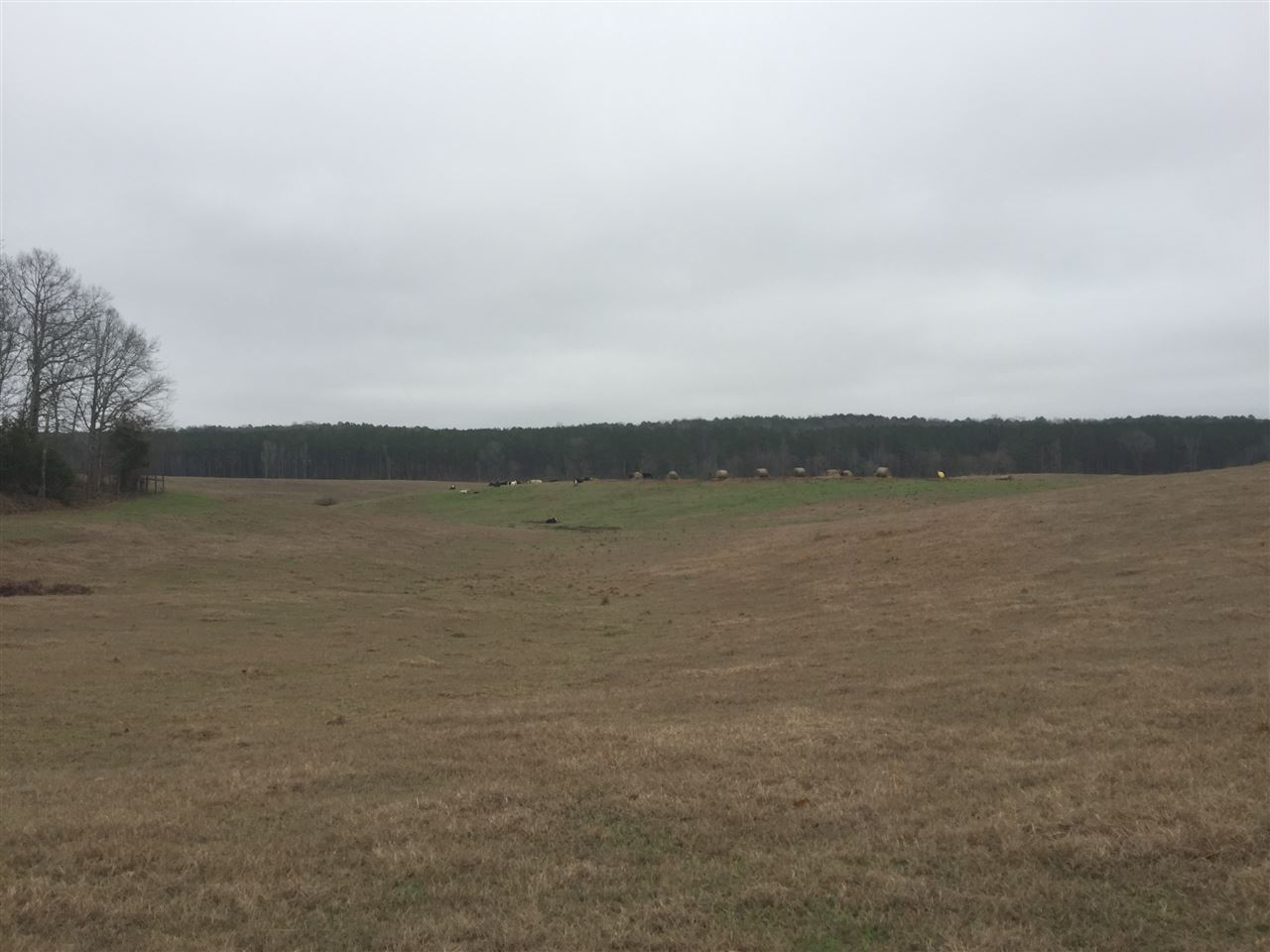 109 RIVERDALE RANCH RD   Durant MS 39063 - Mississippi property for sale