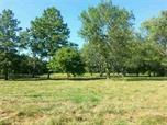 303 E Jackson, Farmland, IN 47340