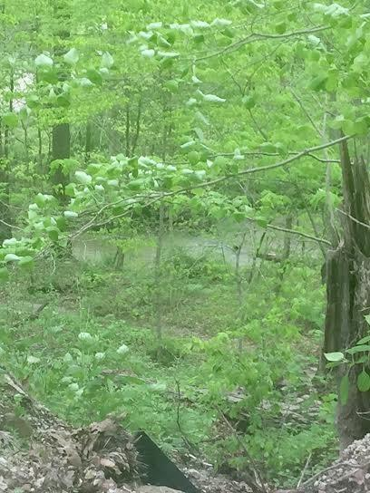 20.38 +/- Acres Plum Creek, Nashville, IN 47448