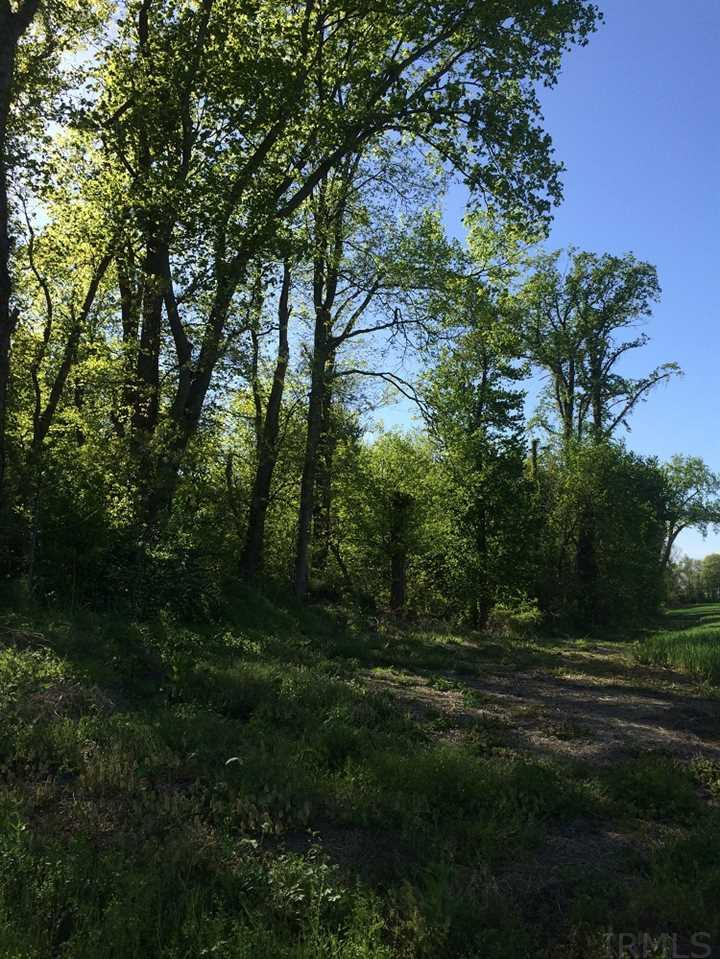 Tract 1 E Springtown Rd., Bruceville, IN 47516