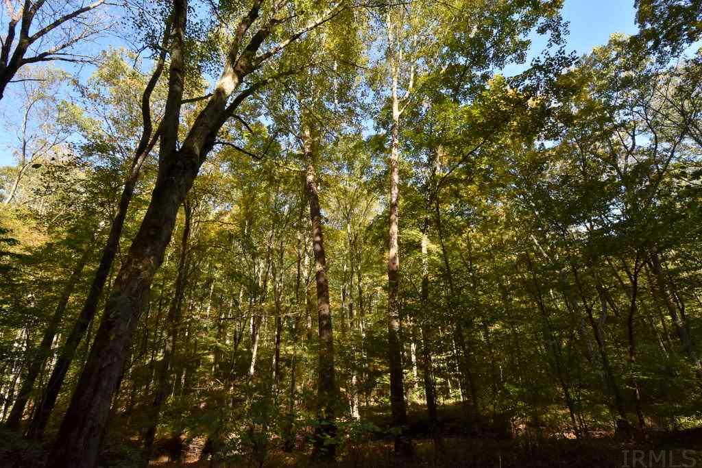 12 +/- Acres Marlett, Nashville, IN 47448
