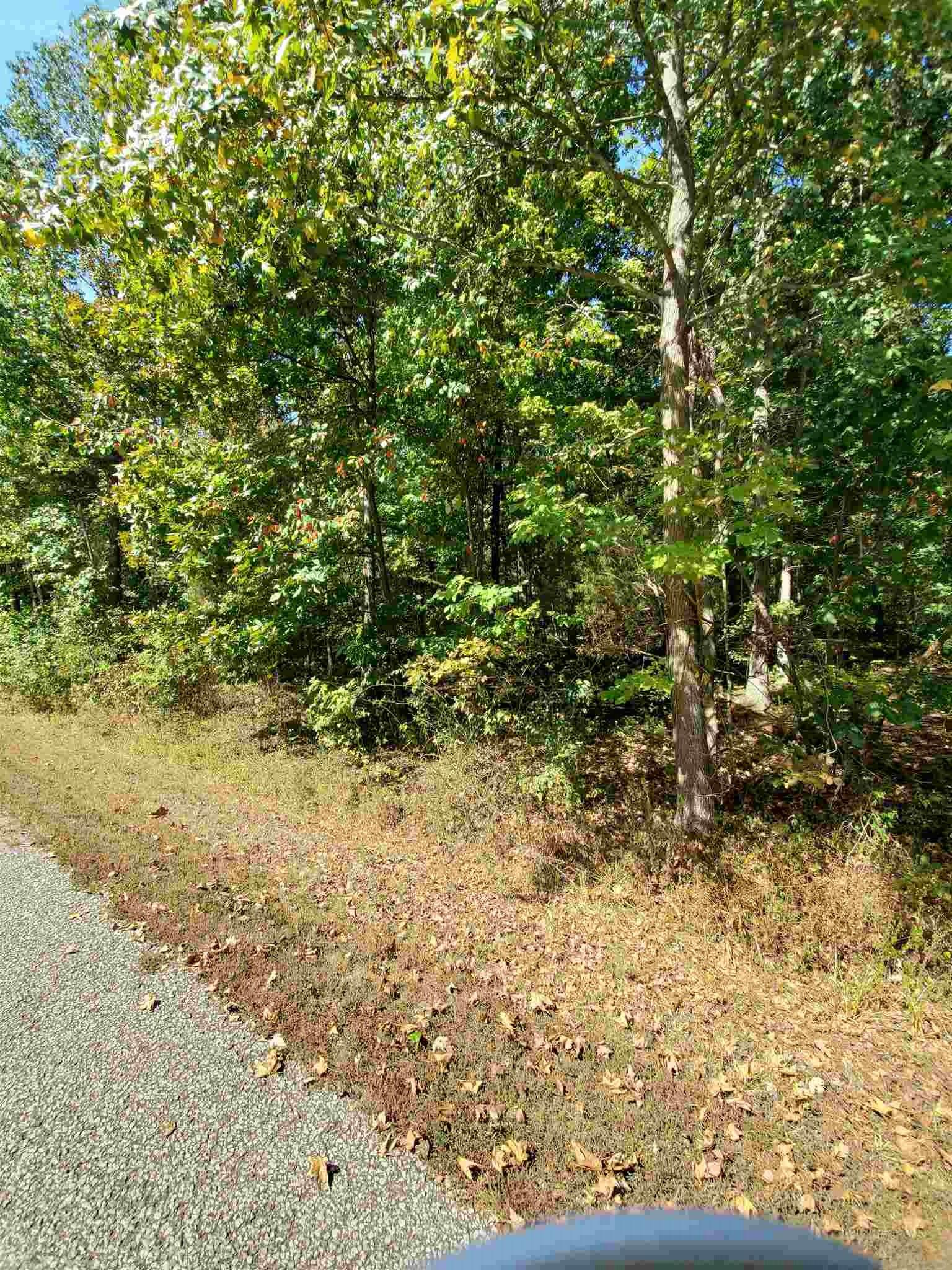 Lot 125 W Silent Lane, Santa Claus, IN 47579