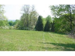 Lot 4 Blue Gate Dr, Spencer, IN 47460