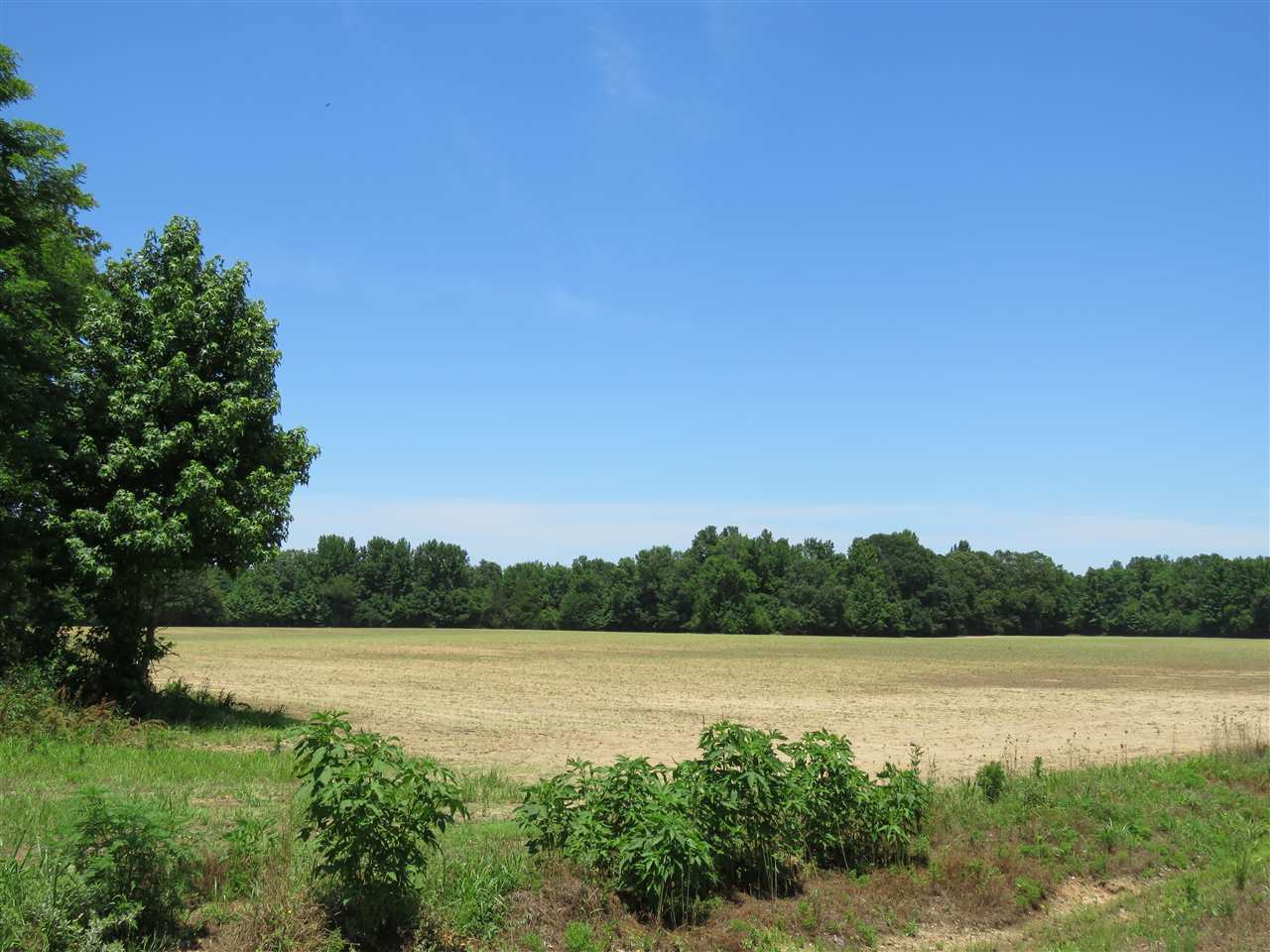 1 CR 444   Oxford MS 38655 - Mississippi property for sale