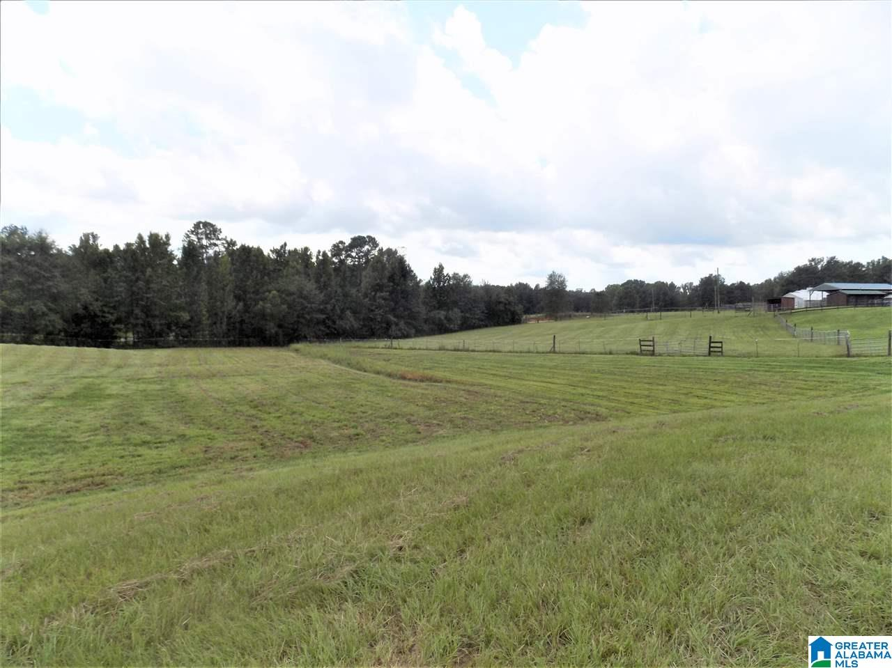 1225 Co Rd 54 Montevallo 35115 Arc Realty