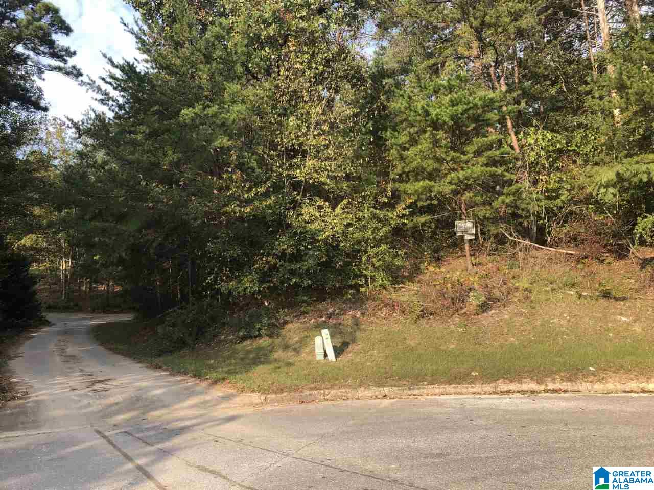121 Swan Lake Cir Lot161