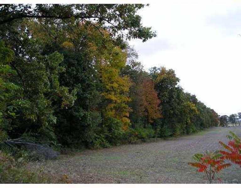 25190 Adams Rd Lot 1 South Bend, IN 46628