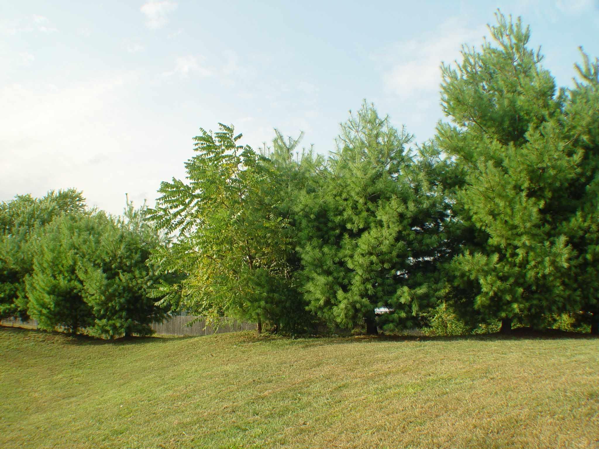 1536 Tall Grass Prairie Mishawaka, IN 46544