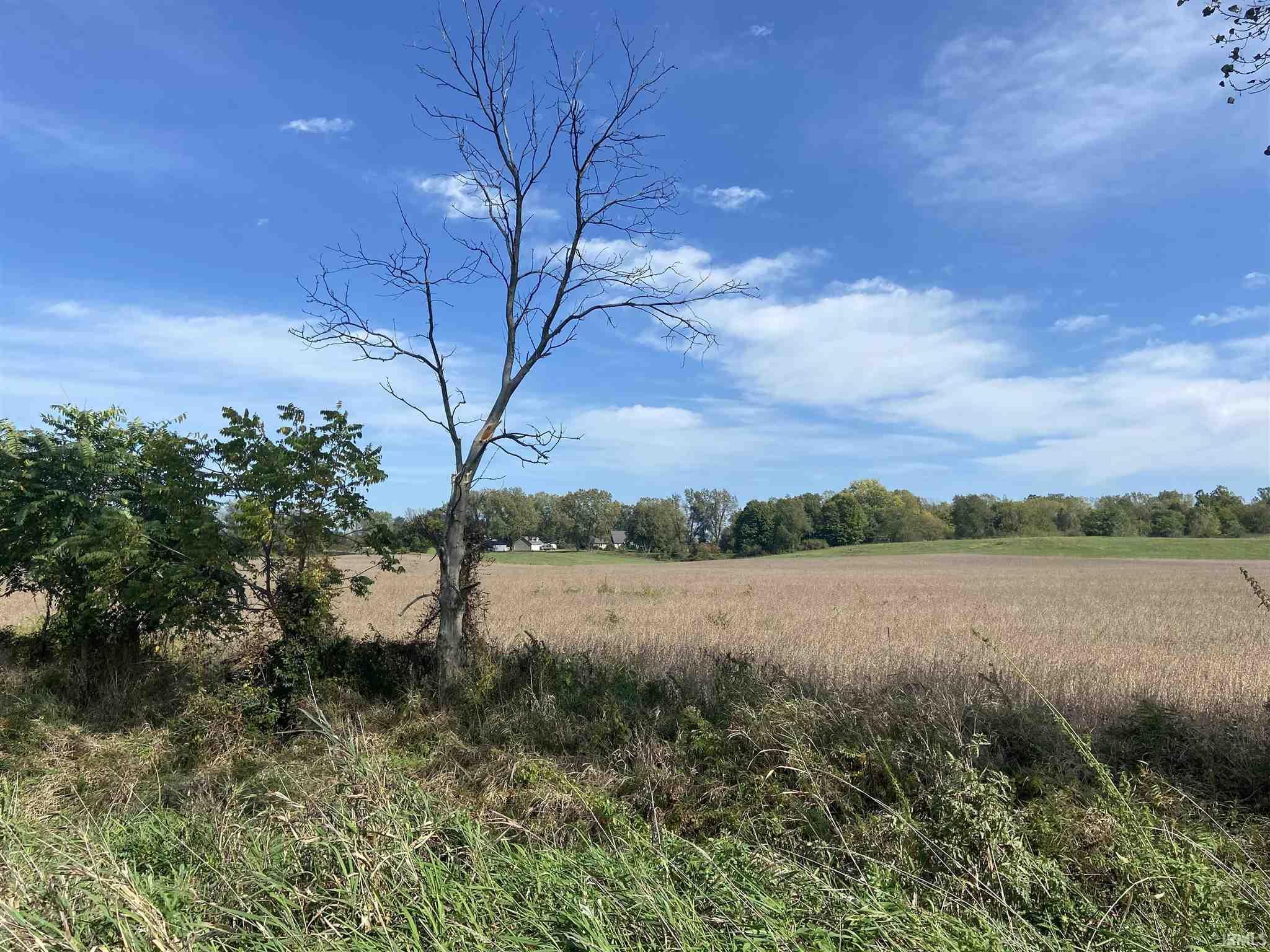 Locust South Bend, IN 46614