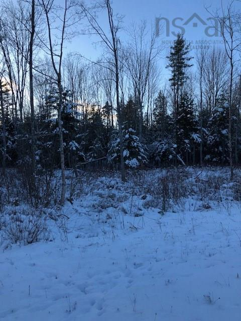 Very large land acreage (1440 acres) with extensive road frontage and many kilometers of internal road systems. Property has pond and is bounded on the Western side by a small meadow and brook system. The perfect escape fr any outdoor enthusiasts.